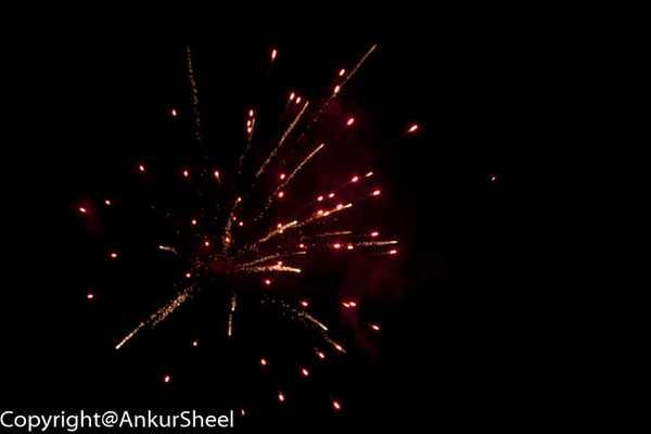 Diwali_Auckland_2104-15