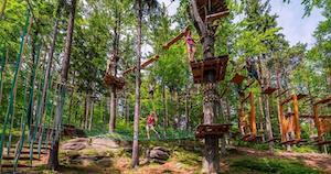 Atrakcja Park Linowy Trollandia. Pod Smerkami - Szklarska Poręba   Domki, Pokoje, Nocleg