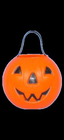 Pumpkin Basket photo