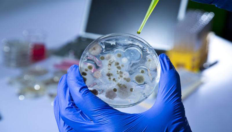 """Imagem em destaque para o artigo: Cientistas criam acidentalmente enzima """"devoradora de plástico"""""""