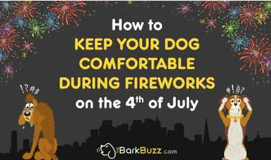 Dogs and July 4th Fireworks Infographic