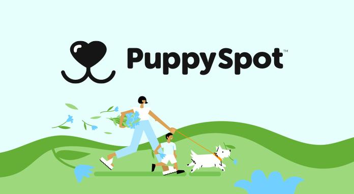 Puppy Spot header