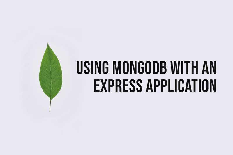 Using MongoDB with an Express.js Application