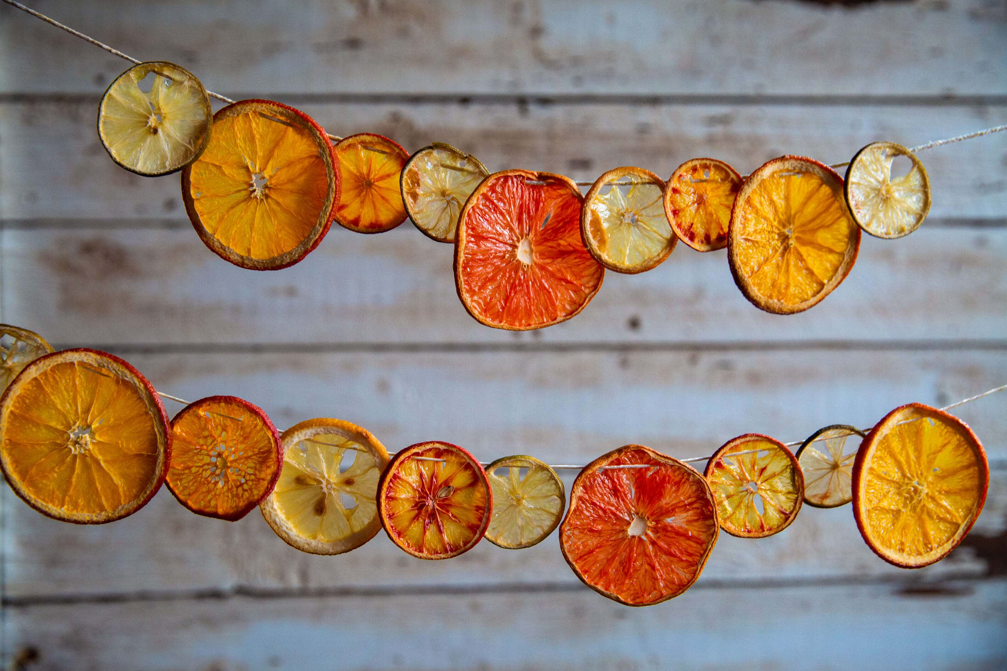 dried citrus fruit hanging on a string