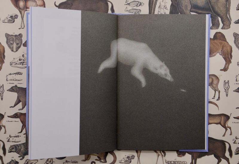 Eisbären von Marie Luise Kaschnitz. Illustriert von Karen Minden.