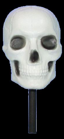 Skull Maraca photo