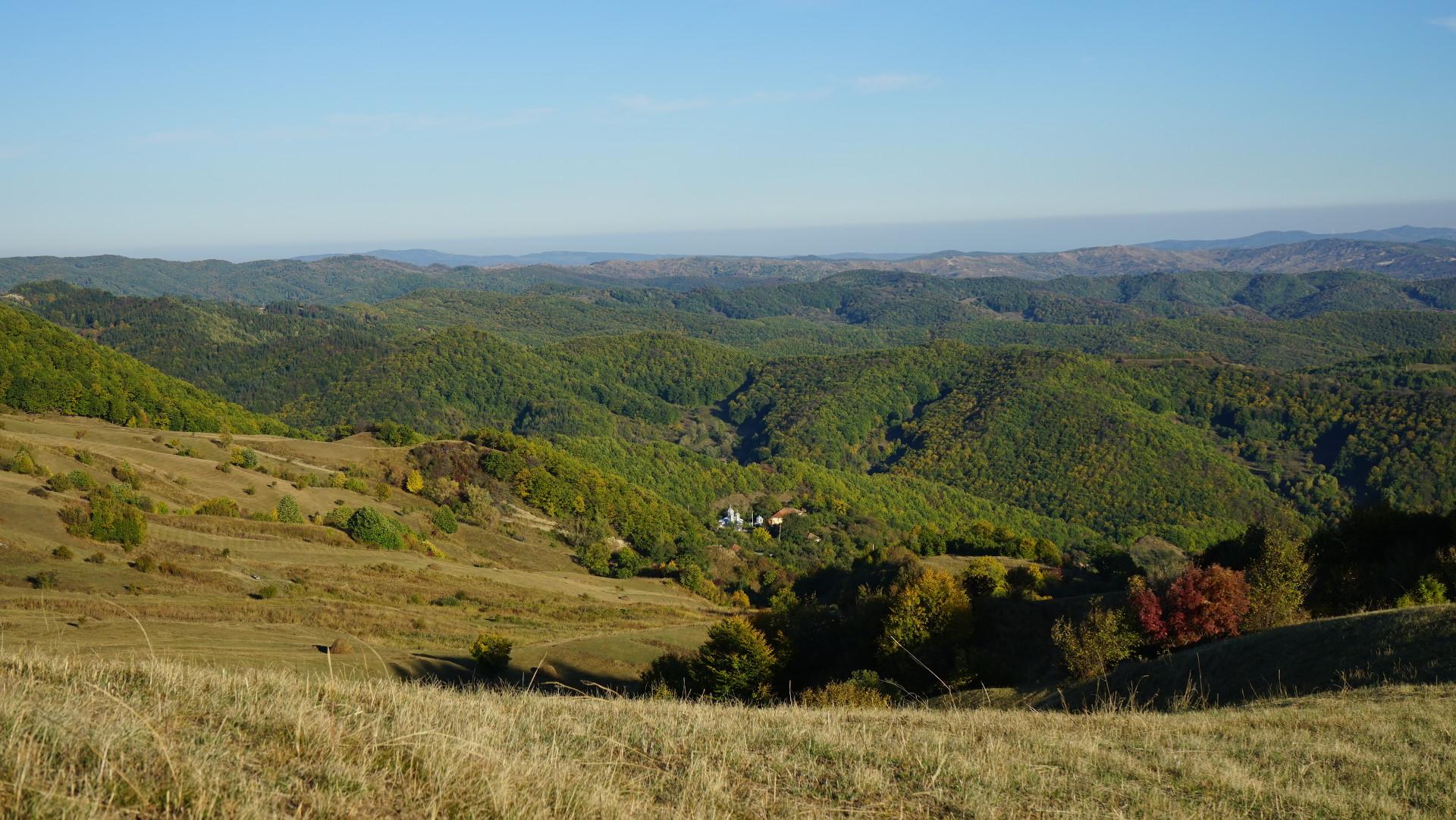 Valea Cotoarei, comuna Mânzălești, județul Buzău