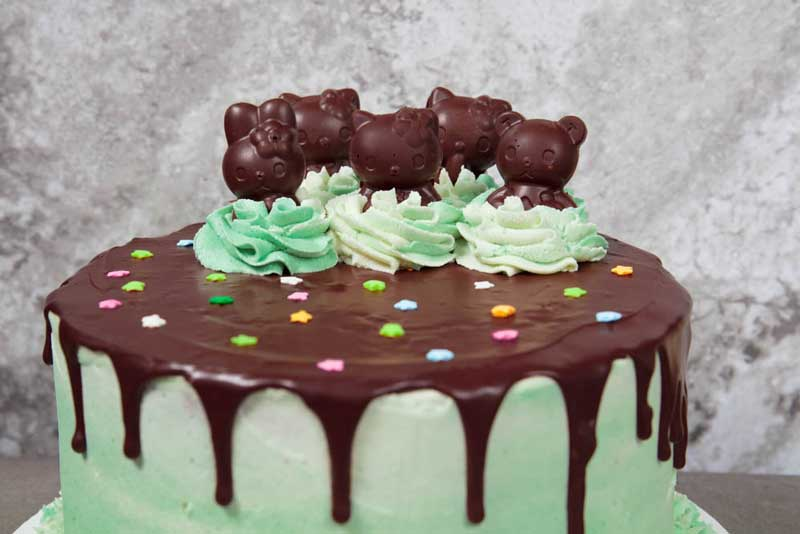 vegan grasshopper cake with hello kitty chocolate mints