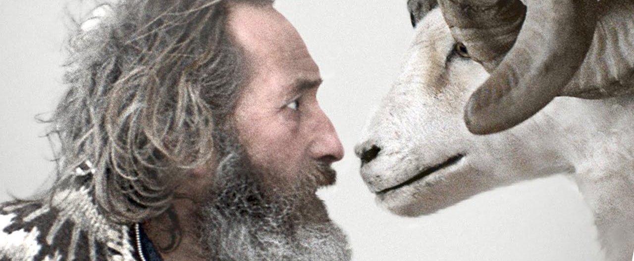 Rams/