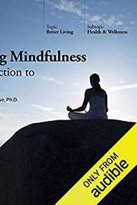 Practicing Mindfulness: An Introduction to Meditation Cover