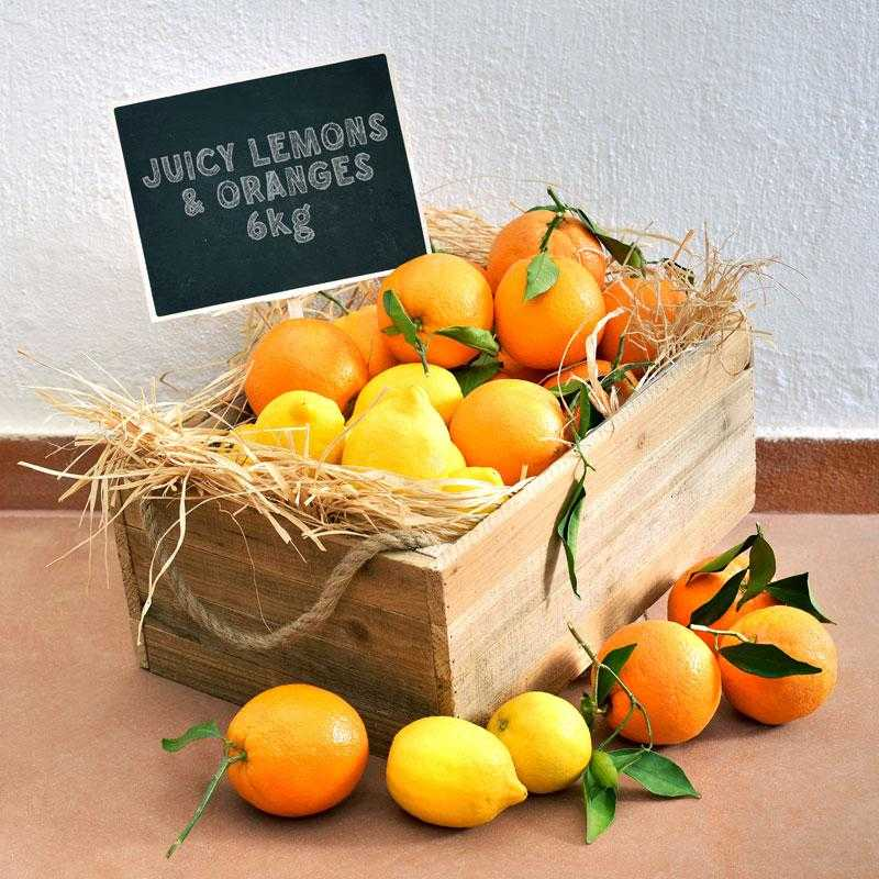 fruit-box-of-fresh-greek-oranges-and-lemons-6kg-argolida-aigio