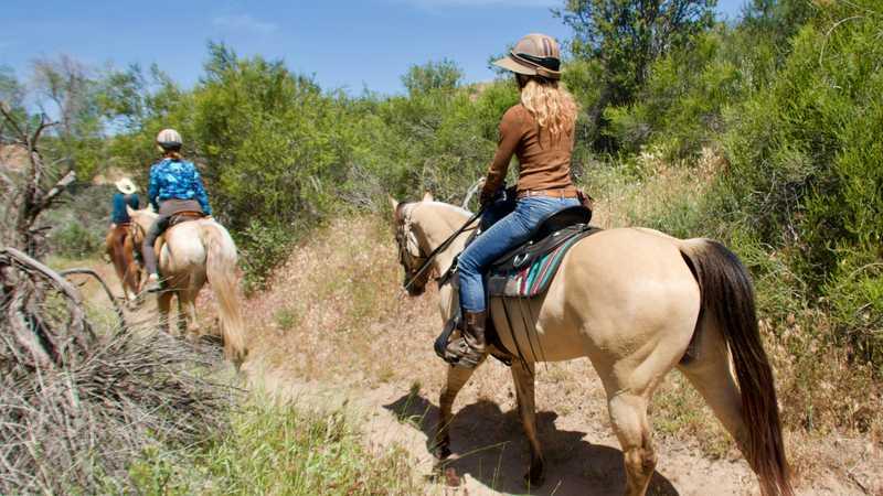 Horse riders in Vasquez Park