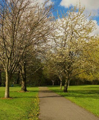 Wortley Recreation Ground