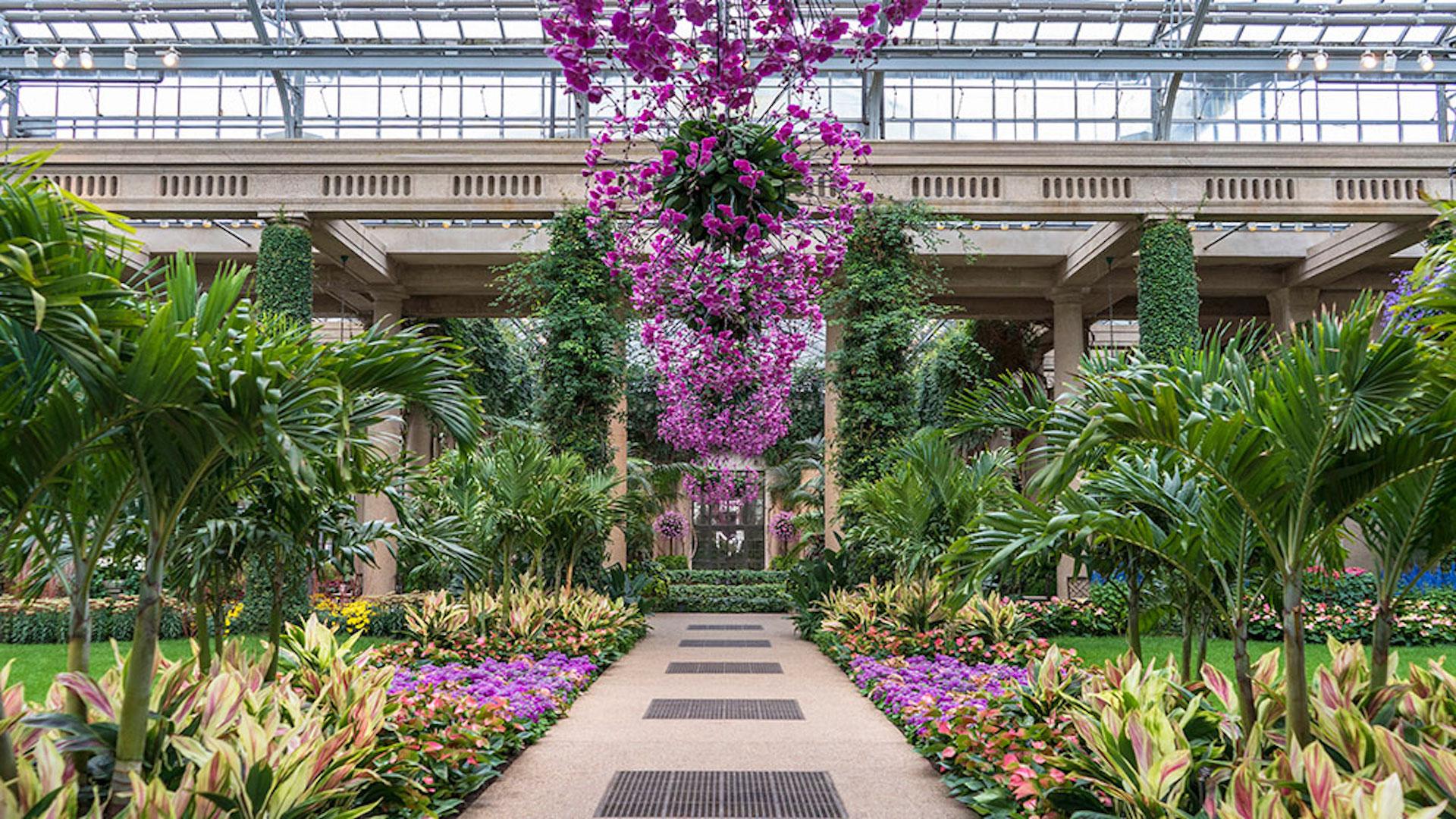 Image courtesy of Longwood Gardens