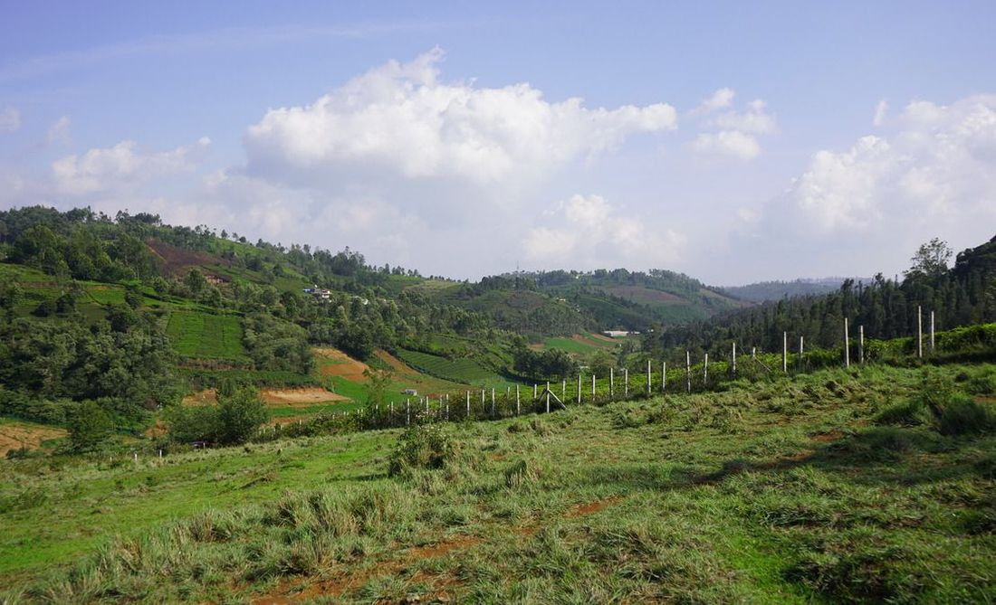View of the meadows of the Ketti Valley