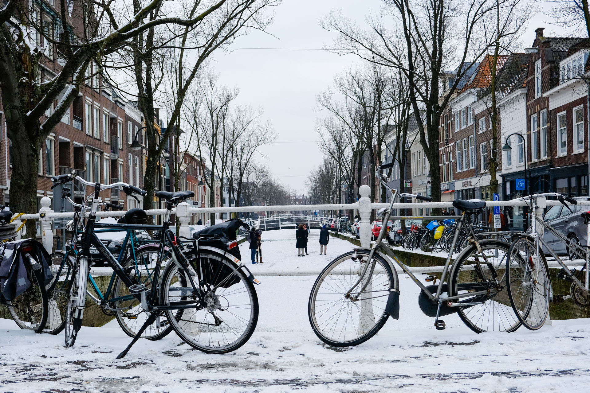 Typisch Nederlands: bike and canal (and snow)