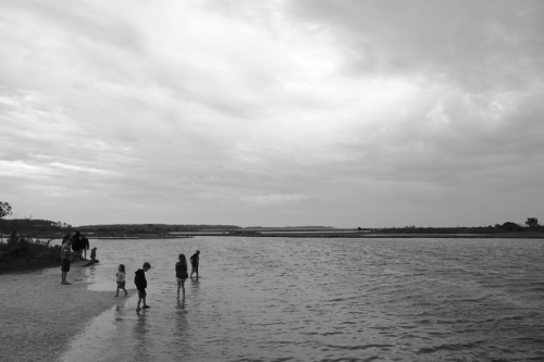 Asateague Island