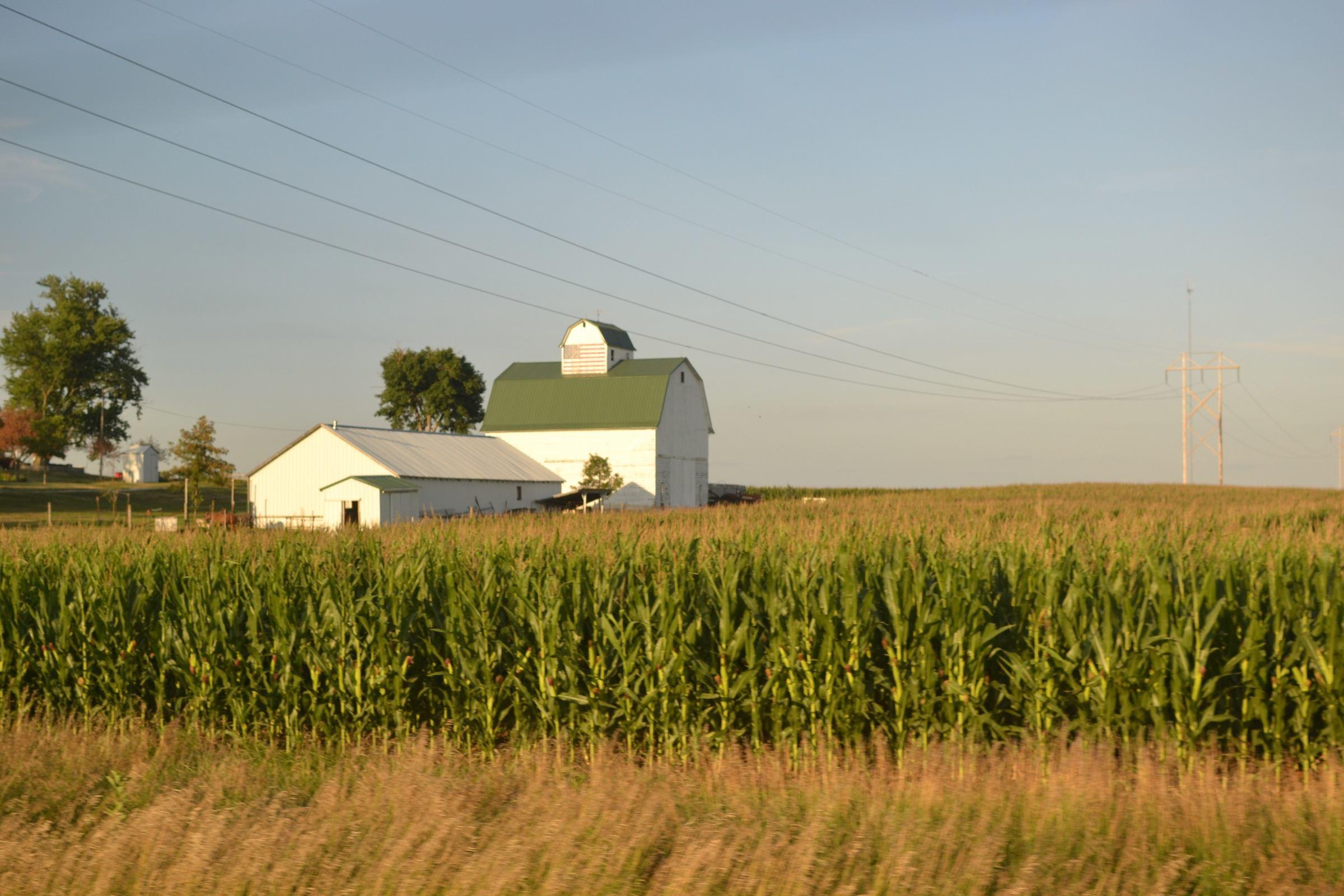 Peaceful evening in Iowa