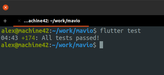 A screenshot of a terminal showing that 174 tests passed in 4 minutes 43 seconds