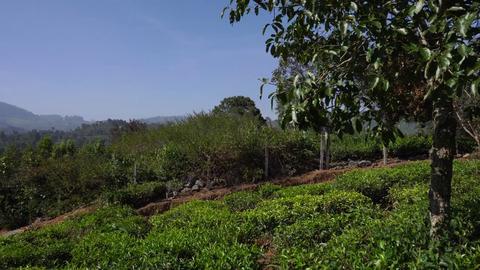 Plot 1 Vista Chiaro - Outer fence