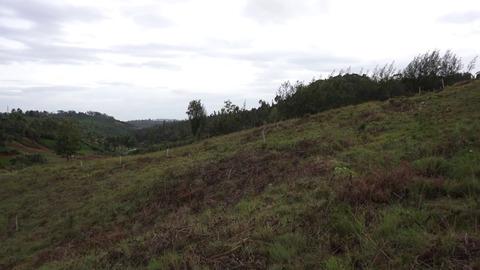 Plot 12 Creekside - wide plot