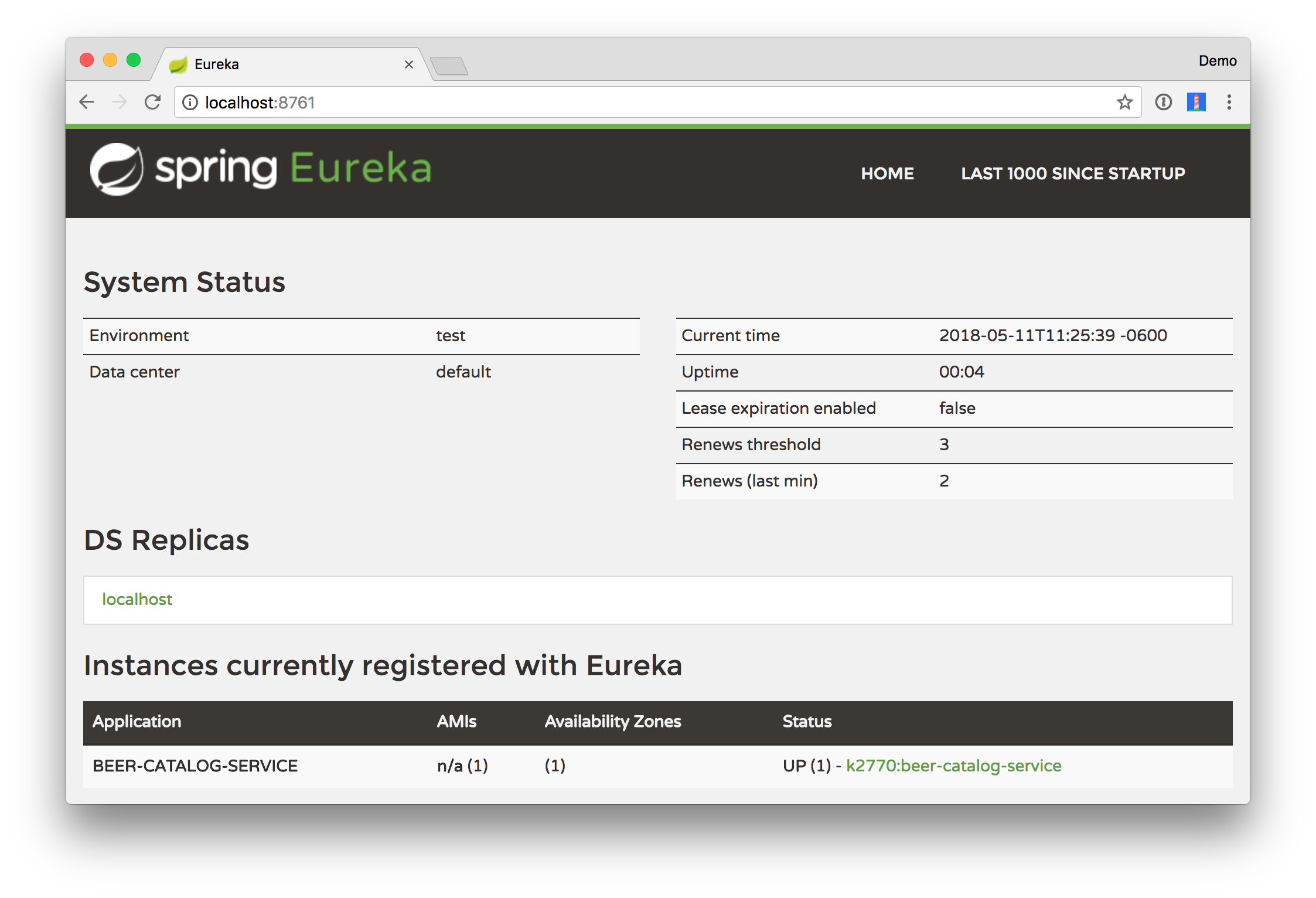 Eureka instances registered