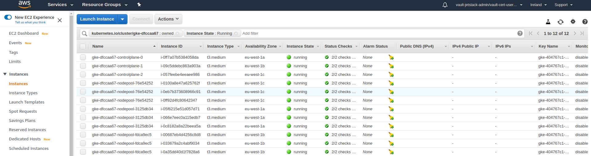 User cluster instances
