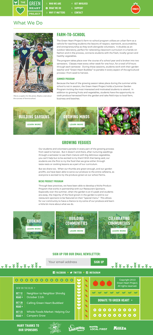 Screenshot of What We Do page on The Green Heart Project website