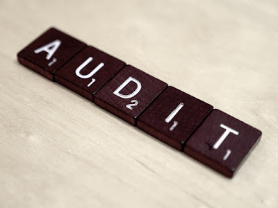 PMI PMP Application Audit Process