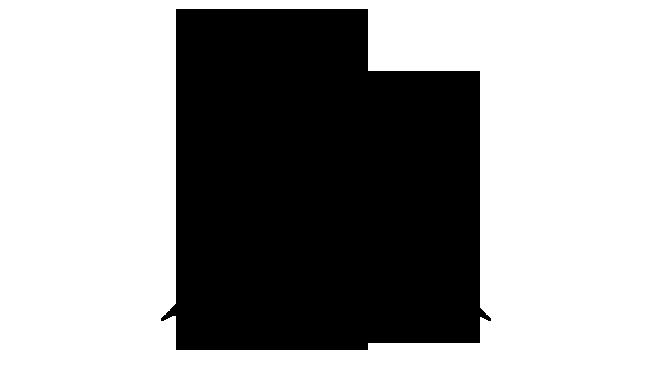 Drone EMP