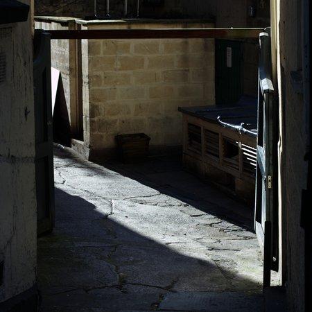Shadows 0371