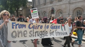 Egypt solidarity activists link up with Palestine protests