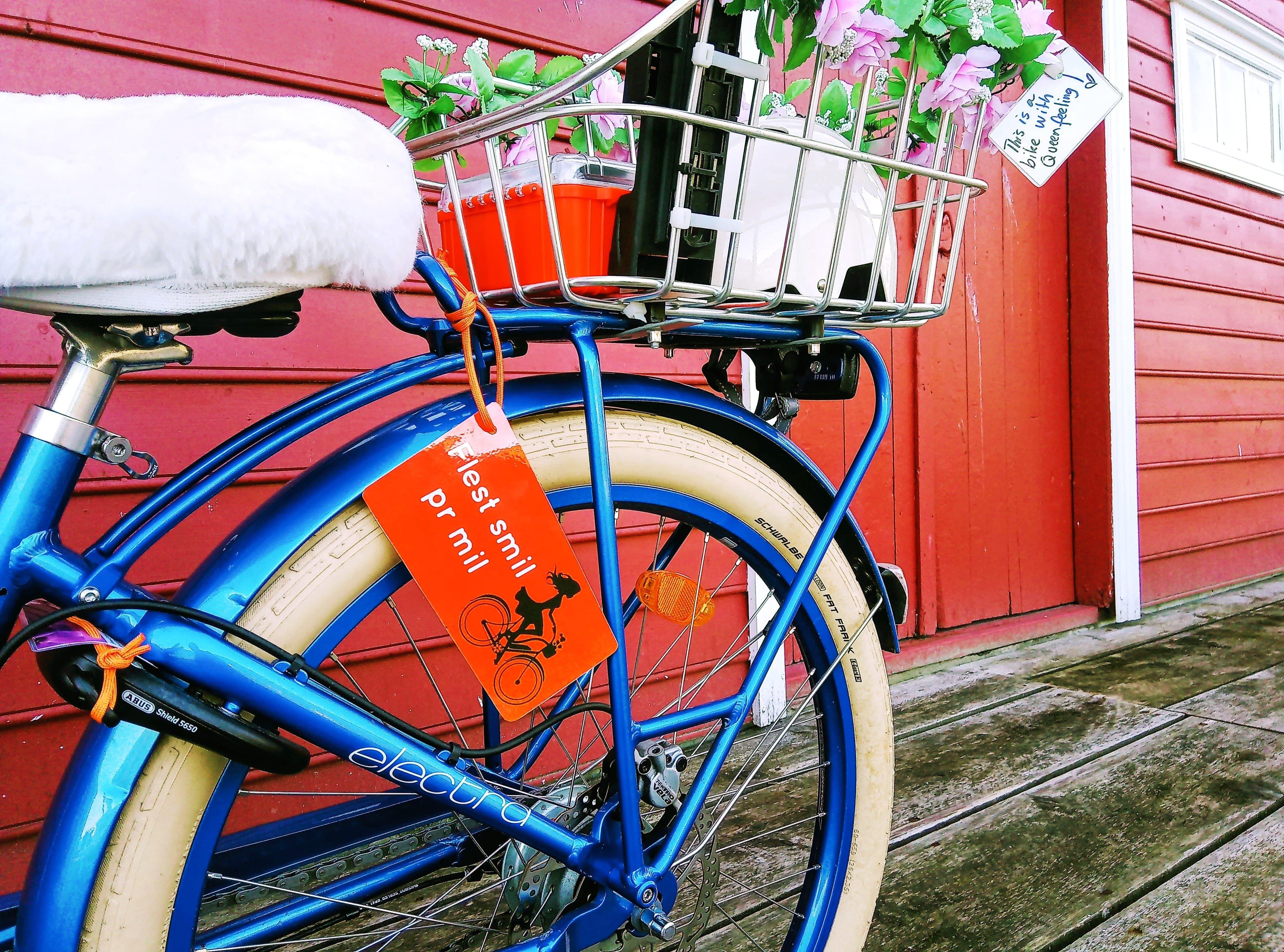 ELSYKKEL LEIE i Balestrand? - Vi har de fine, blå og gode Elektra Townie Go fra Sykkelpikene!