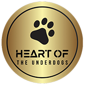 Heart of the Underdogs