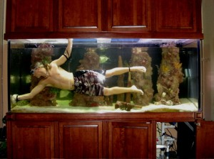 Fish Tank Care - How to Clean Algae