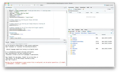 RStudio's four pane view immediately after installation.