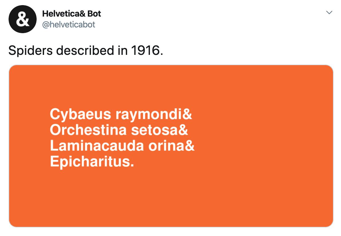 """Screenshot of a Helvetica Bot tweet. The category is """"Spiders described in 1916."""""""