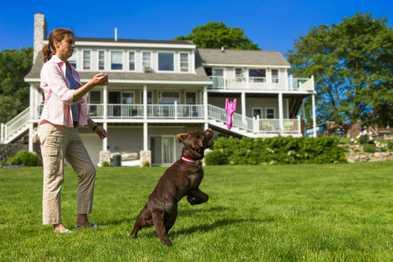 Kurgo's Yard Games: Doggie Dart
