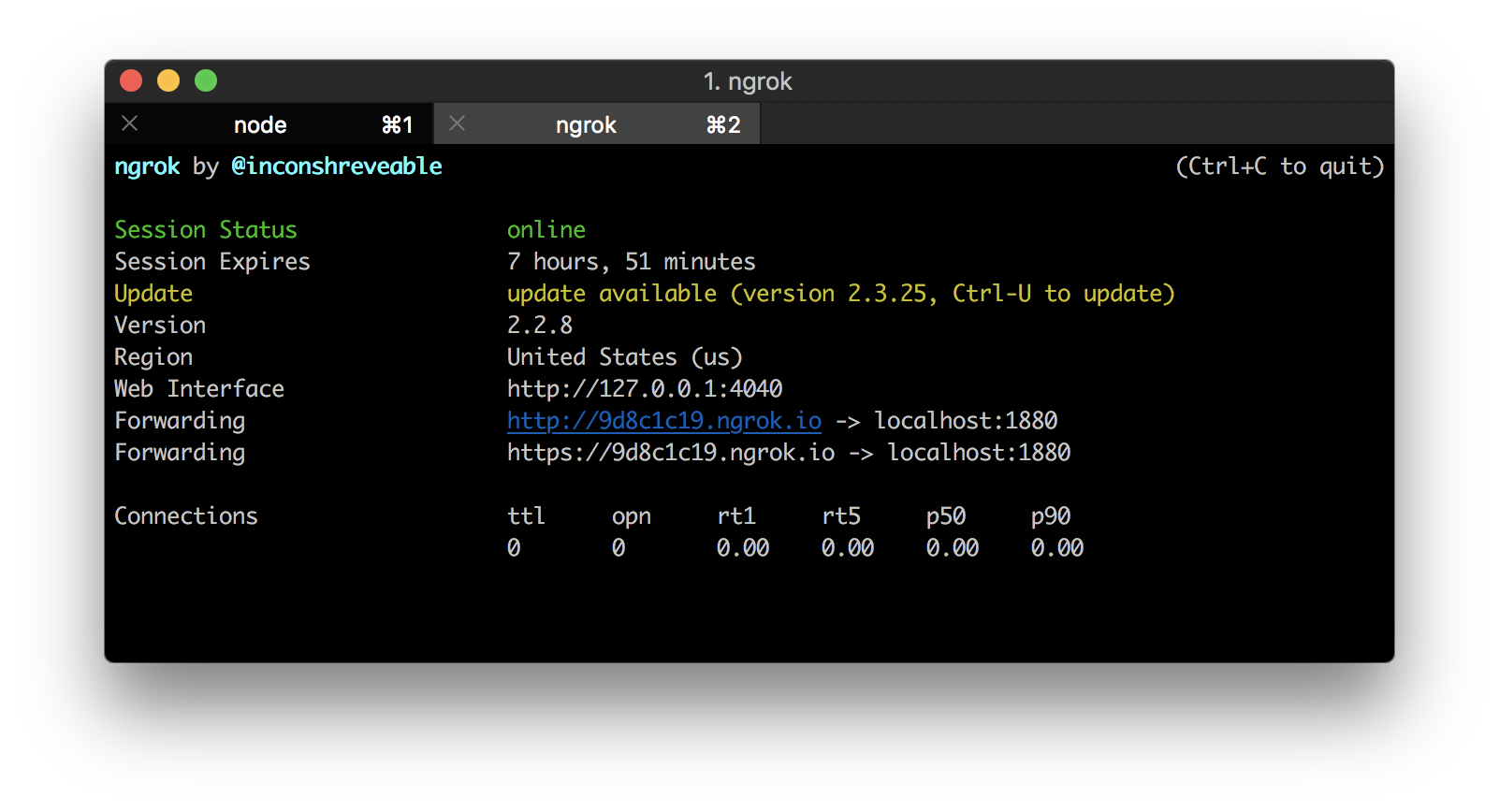 Starting an ngrok tunnel in a terminal window