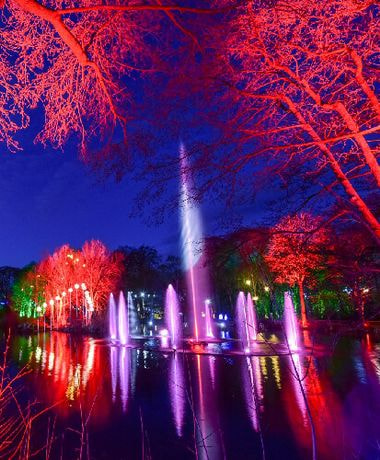 Stockeld Park Winter Illuminations