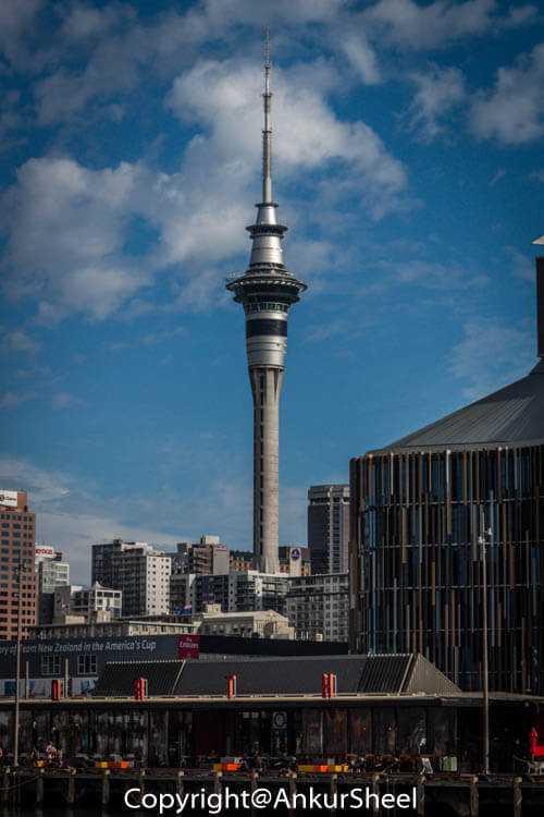 Auckland_Seaplanes-3