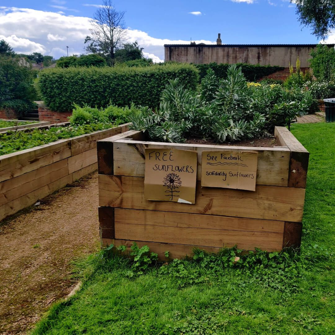 Gotts Park Veg patch with sign for free sunflowers