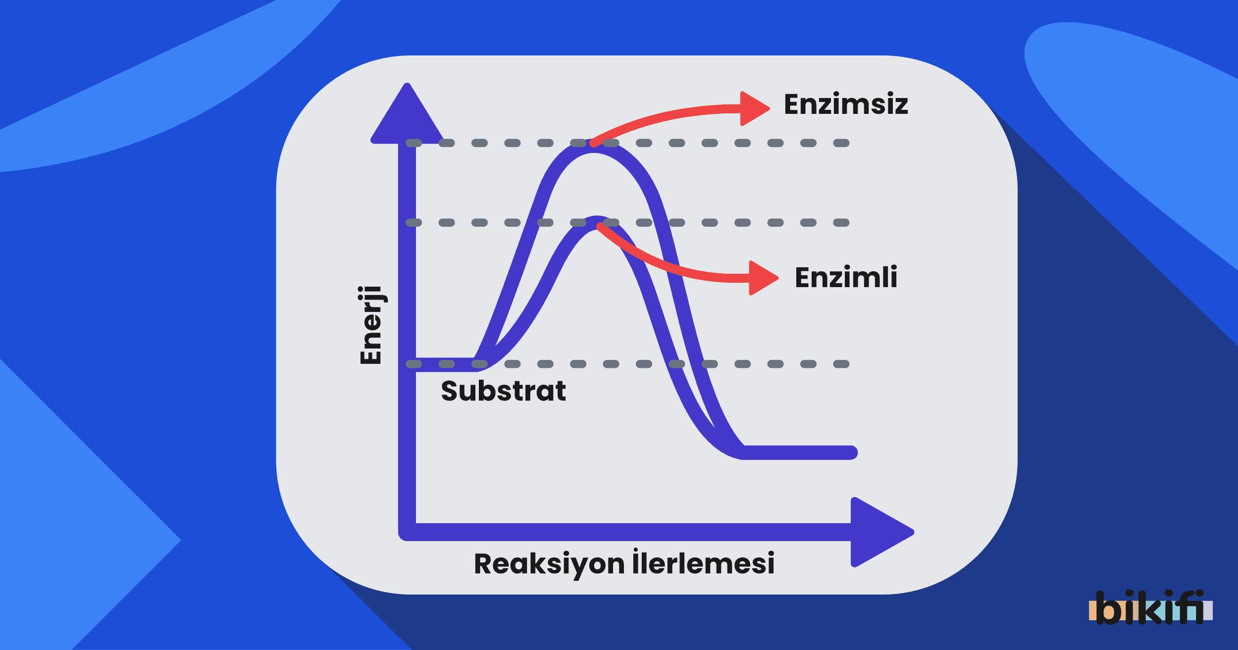 Kimya ve Enerji