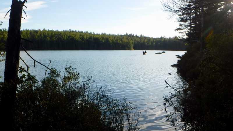 Daicey Pond