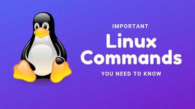 Basic Linux Commands That Every User Should Know