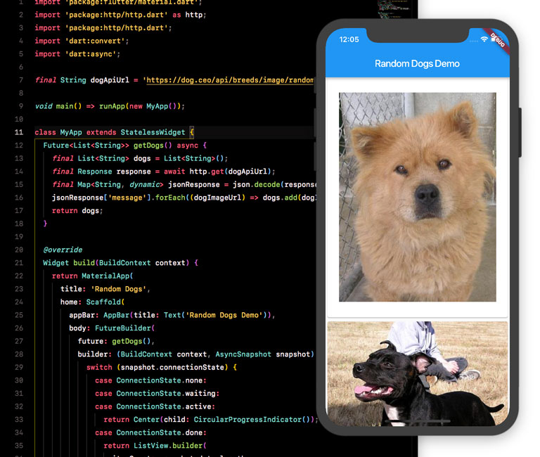 Code and screenshot of app with dogs on the screen.