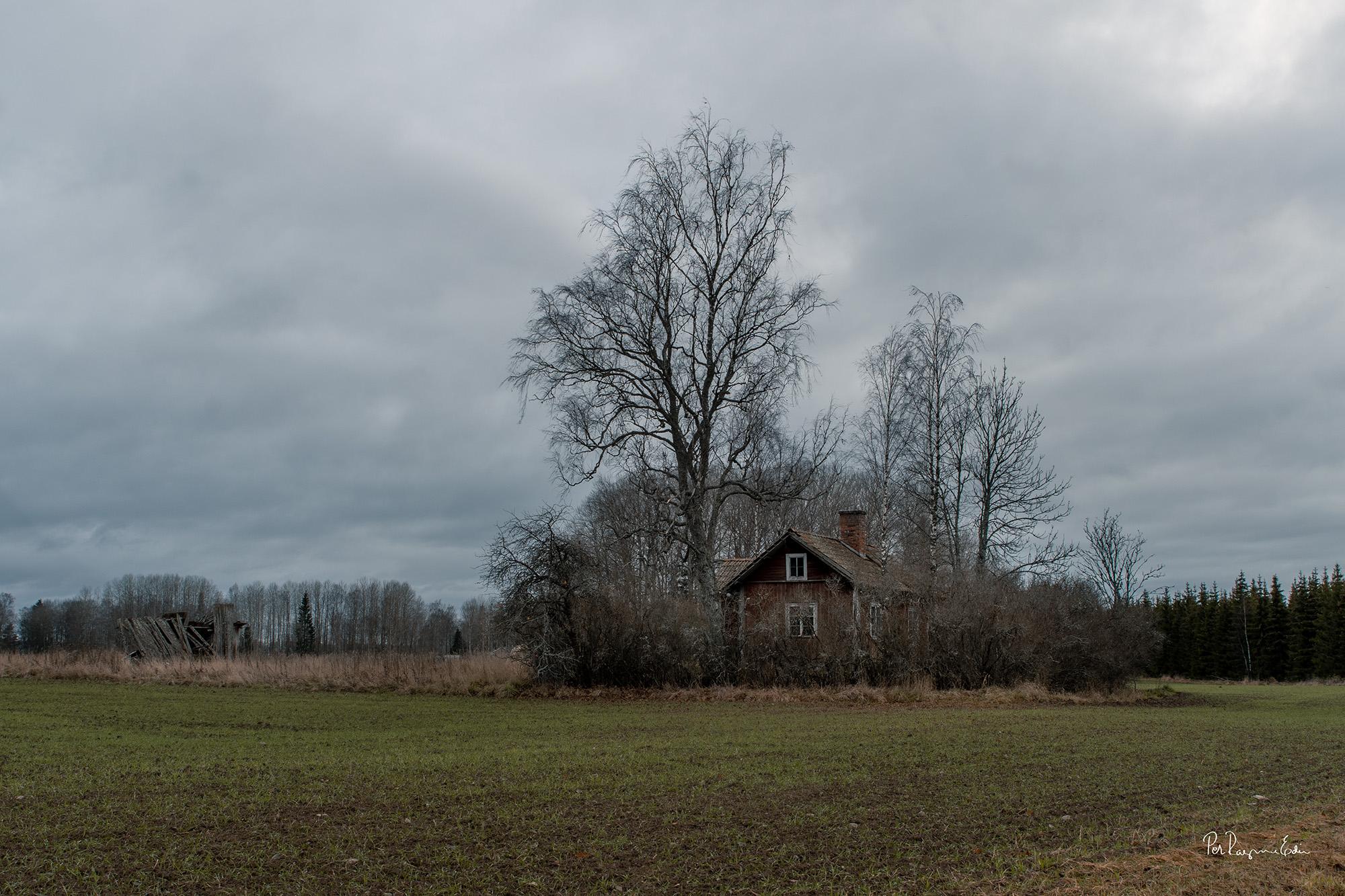 Torpet, sen höst 2019