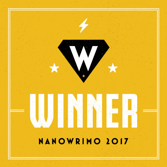 Nanowrimo 2017 and beyond