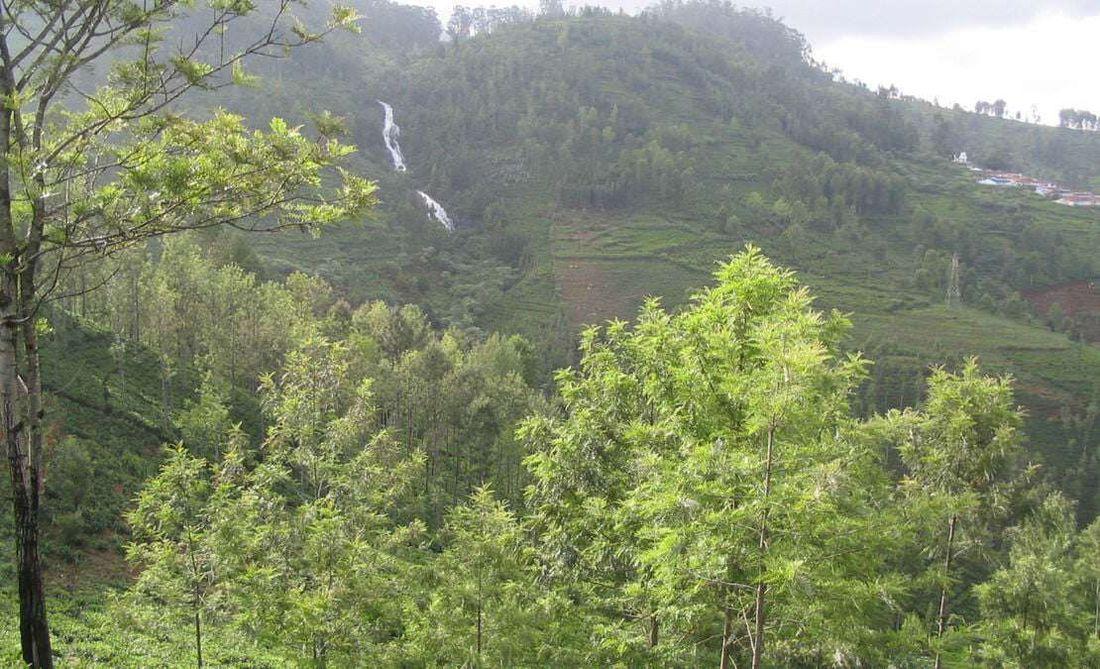 seasonal waterfall from the Ralliah Dam overflow