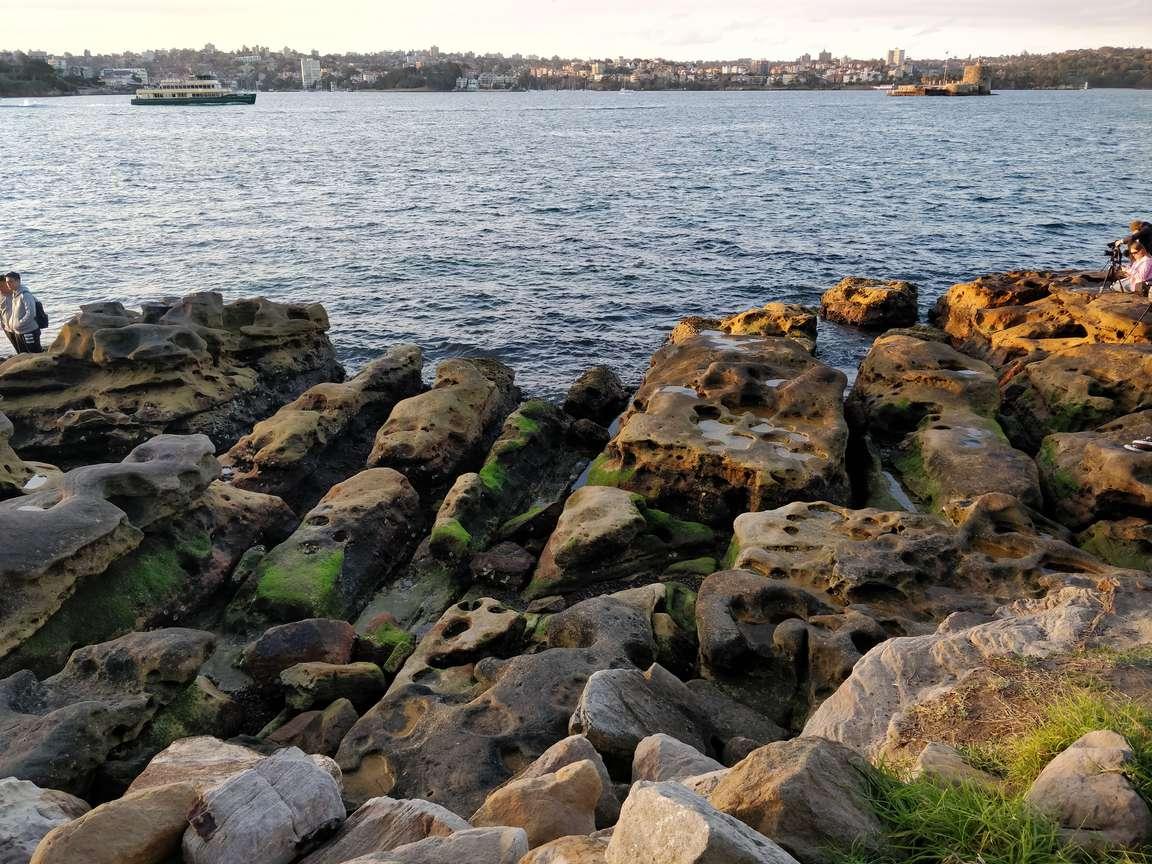 岩と水辺やで